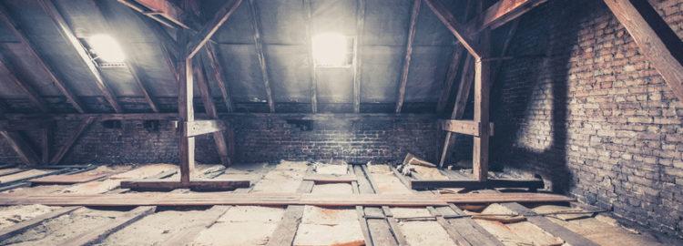 Neubau und Sanierung mit MTM Dachtechnik